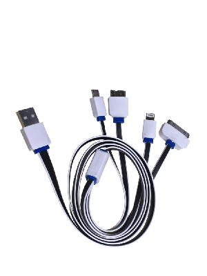 USB to 4 Way Multi Plug Charger Cable